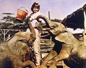 Fotograma de la película Hatari